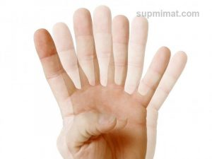 Biểu hiện bệnh song thị là nhìn 1 thành 2